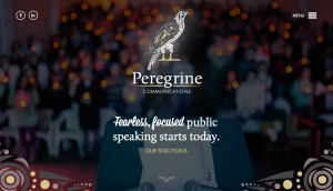 Peregrine Communications was great because we got to help a new company brand itself with a logo and website!  Peregrine was also a website we won a 2016 GDUSA for!
